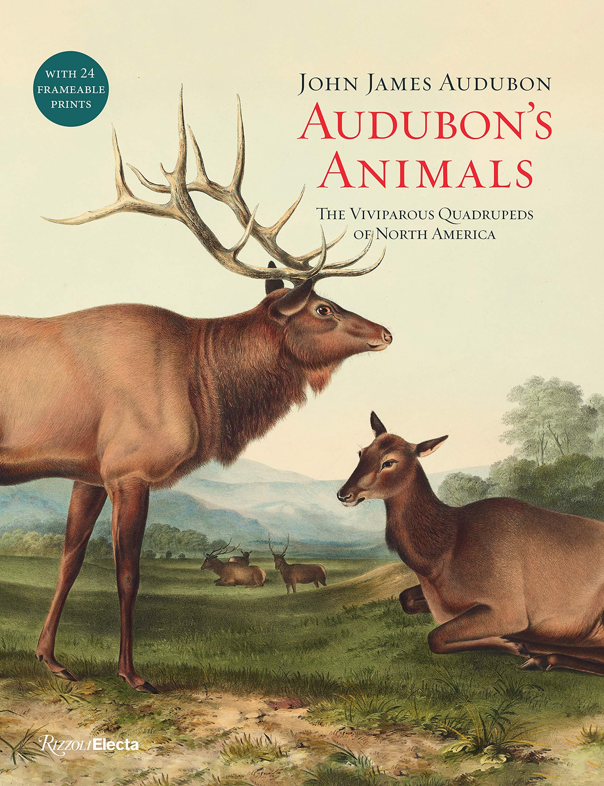 Audubon's Animals  The Viviparous Quadrupeds Of North America