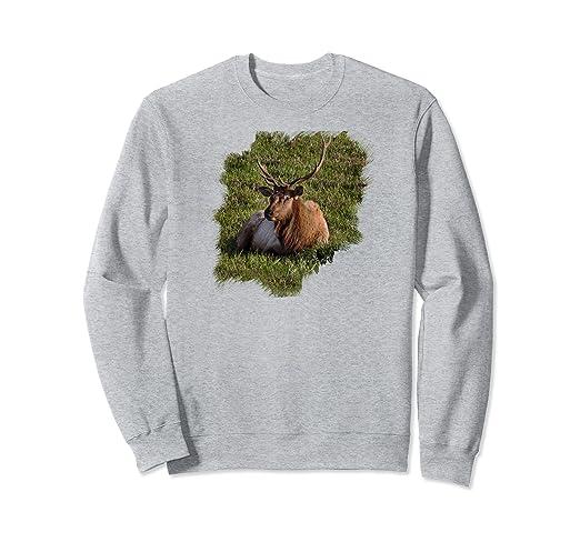 Elk Sitting Sweatshirt