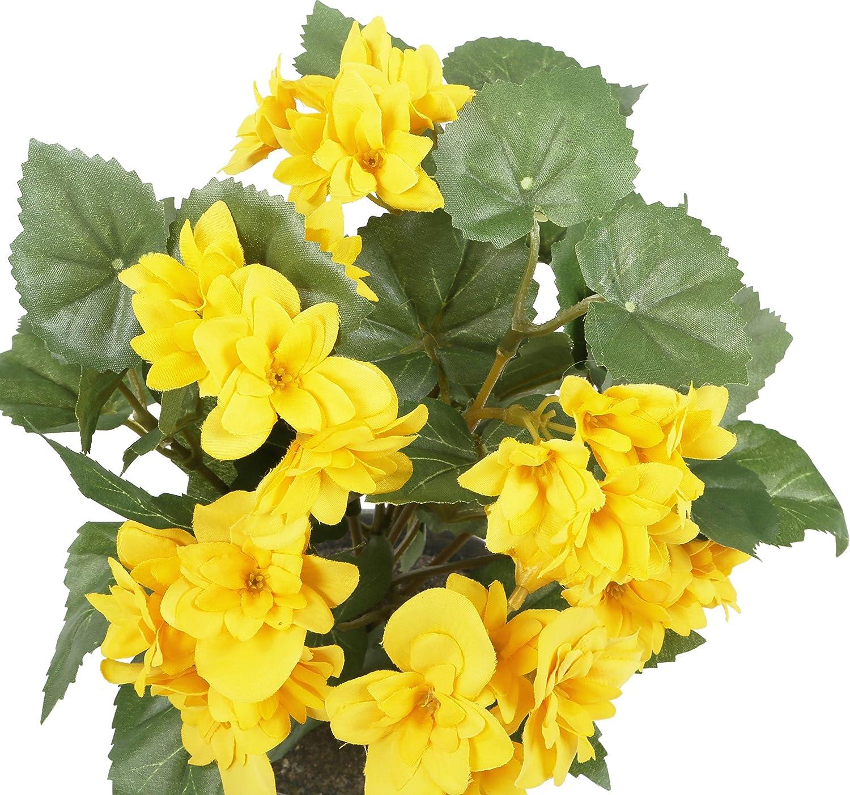 HBC009YE Closer 2 Nature 24 cm Vaso Non Incluso Begonia Finta con Fiori Gialli Altezza: ca