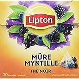 Lipton Thé Mure Myrtille 20 Sachets 36g - Lot de 3