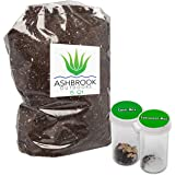 Succulent & Cacti Garden Starter Soil Kit | 5 Quarts of Premium Planting Soil with Nutrients | Beautiful Variety of Cactus Seeds & Succulent Seeds in Protective Vials | Great Gift