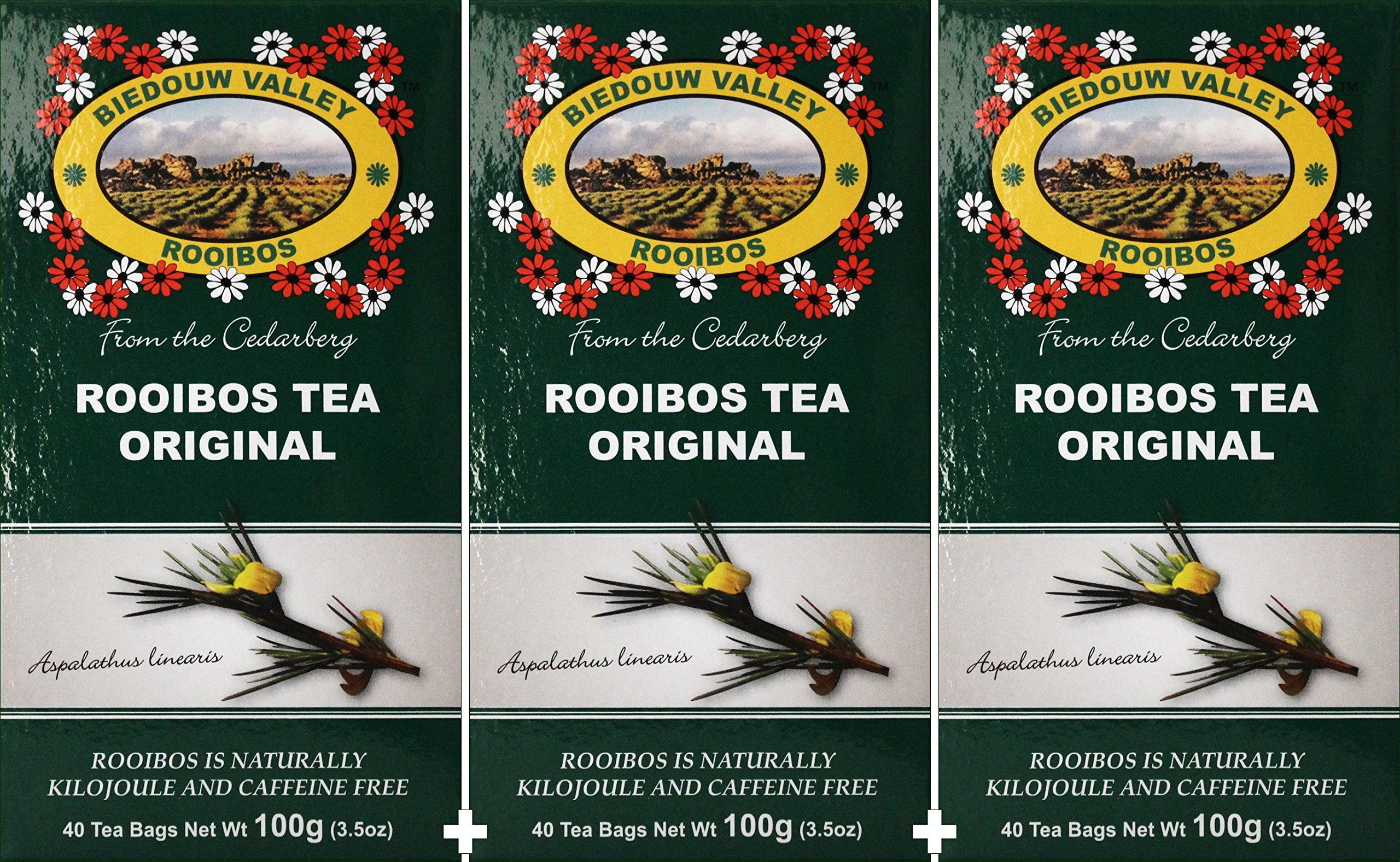 Rooibos Tea: 100% Natural Original South African (120 Bag Count 10.5oz) Red Bush Healthy Herbal Tea - Caffeine Free, Calorie Free, Antioxidant & Mineral Rich. Grown At High Altitude in Natural Habitat by Biedouw Valley Rooibos