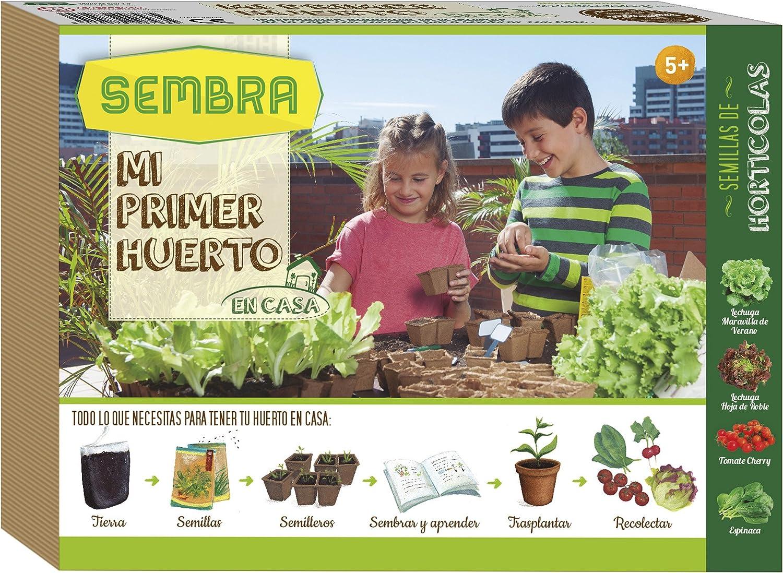 Que plantar en septiembre huerto urbano
