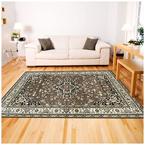 Superior 8mm Pile Height with Jute Backing, Elegant Traditional Design, Fashionable and Affordable Woven Rugs, 4 x 6 Rug