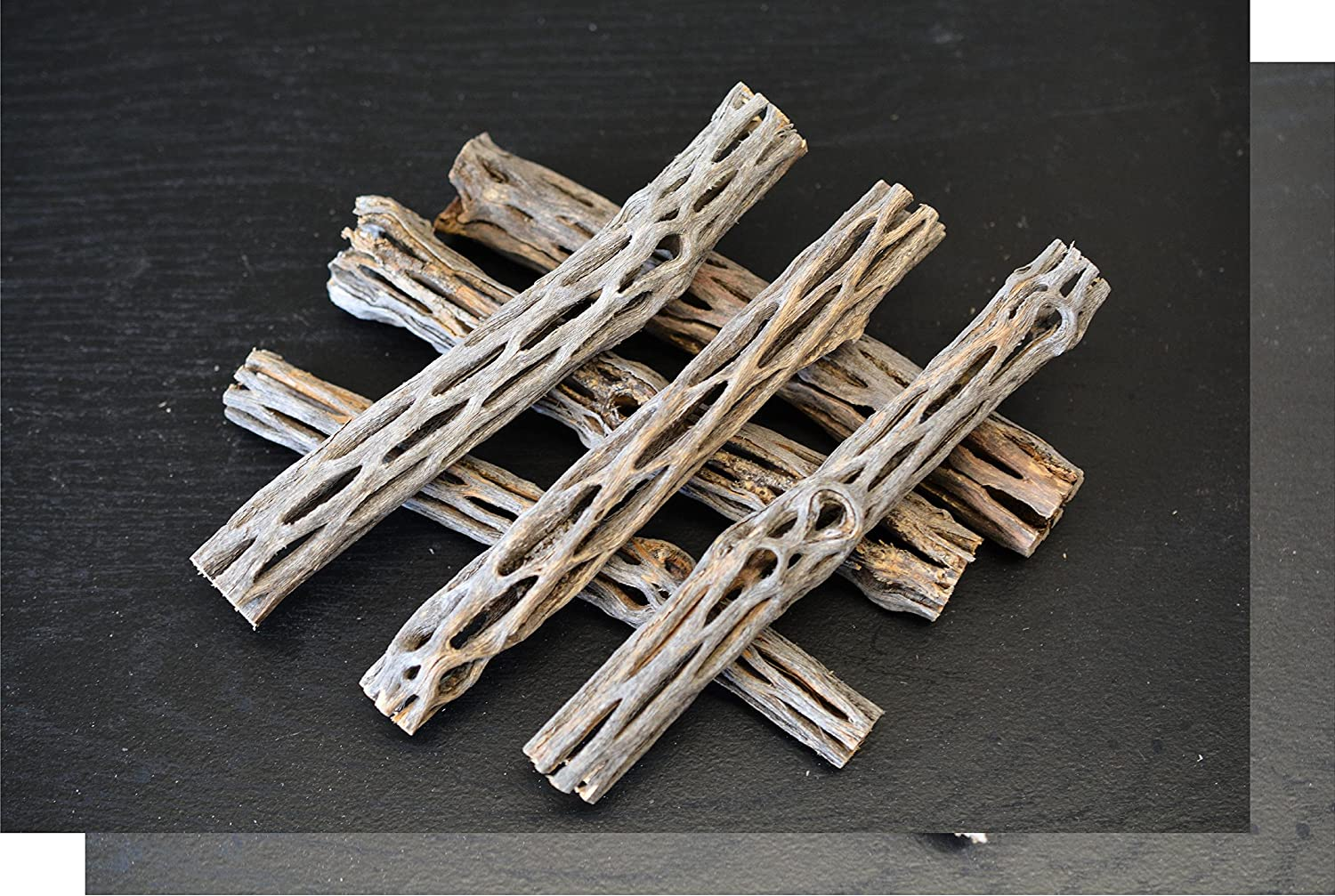 (8) CHOLLA WOOD S&C AQUATICS