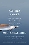 Falling Awake: How to Practice Mindfulness in Everyday Life (Coming to Our Senses Part 2)
