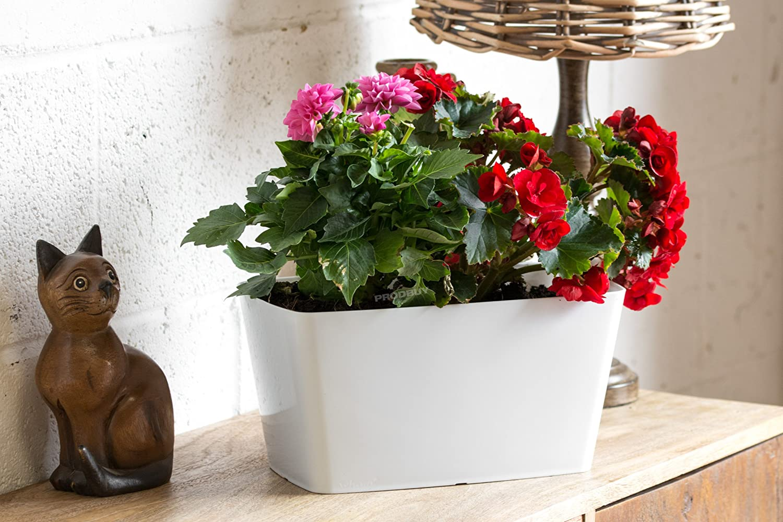 3 x WHITE Rectangular 30cm Plastic Plant Pot Cover Troughs