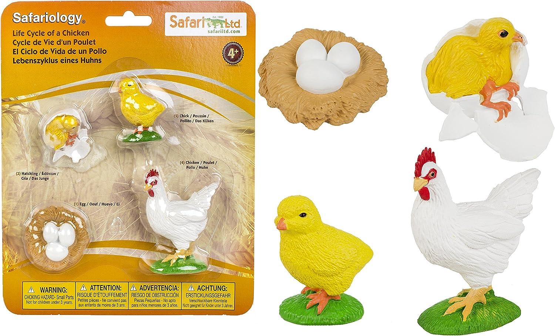 Safari Life Cycle of A Chicken Multicolor alfonbrilla para ratón