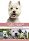 The West Highland White Terrier: A Vet's guide on how to care for your West Highland White Terrier