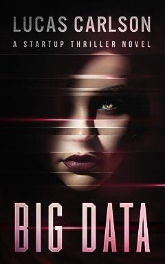 Big Data: A Startup Thriller Novel
