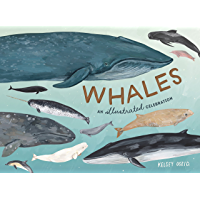 Whales: An Illustrated Celebration (English Edition)