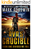 Divided We Fall: A Post-Apocalyptic Novel of America's Coming Civil War (Ava's Crucible Book 1)