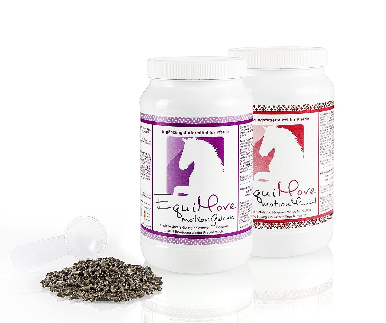 EquiMove motion Gelenk (GelenkSchutz) & EquiMove motion Muskel (MuskelKraft) je eine Dose (1,5 kg) - die Spar-Kombination Borreliose bei Gelenk- und Muskelproblemen bei Pferden oder Ponys
