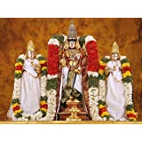 PPD Tirupathi Balaji Wall Sticker Lord Balaji Non-Tearable Poster for Home and Office Wall Decor (12 INCH X 18 INCH)
