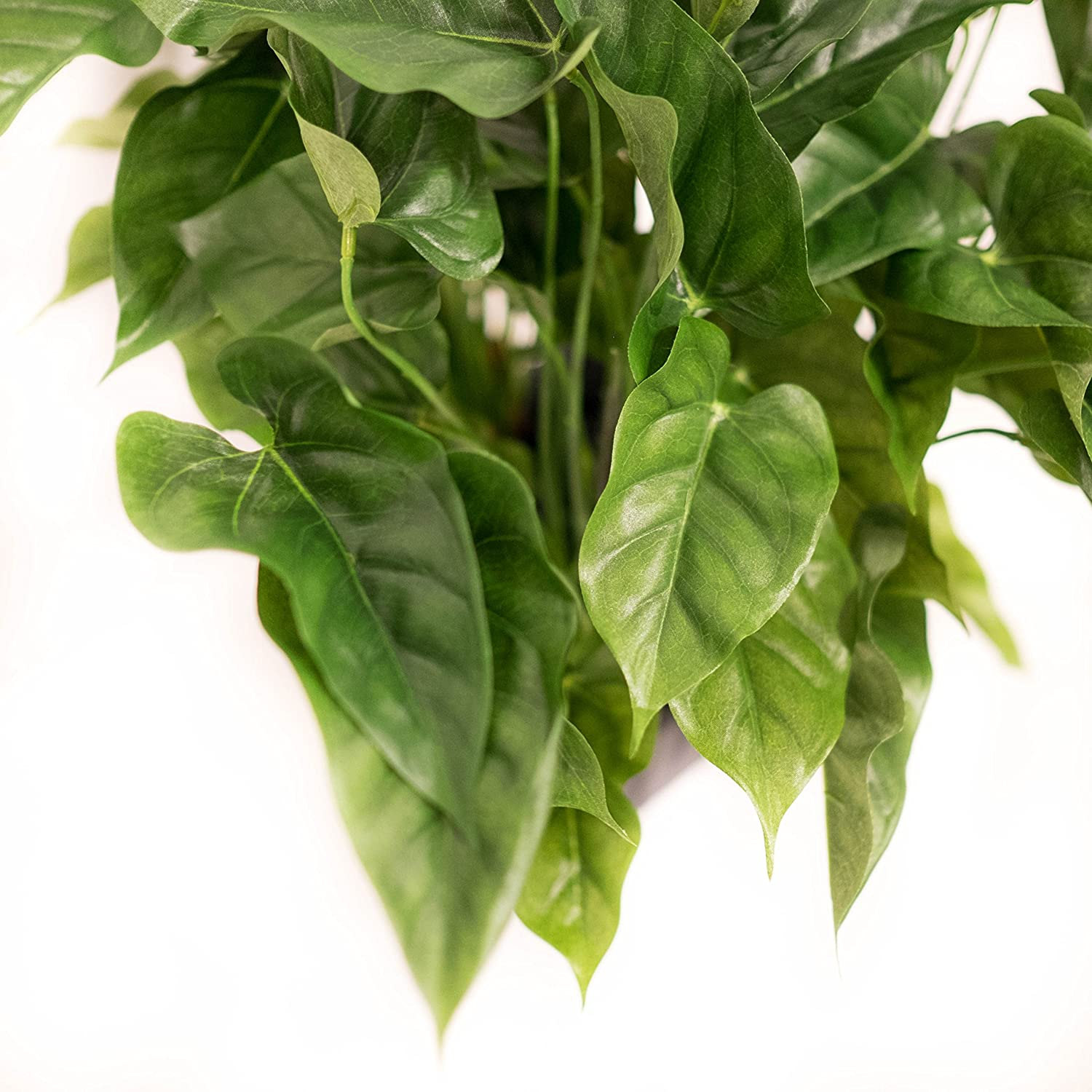 Silk Plant Decor and More Artificial Anthurium Bush