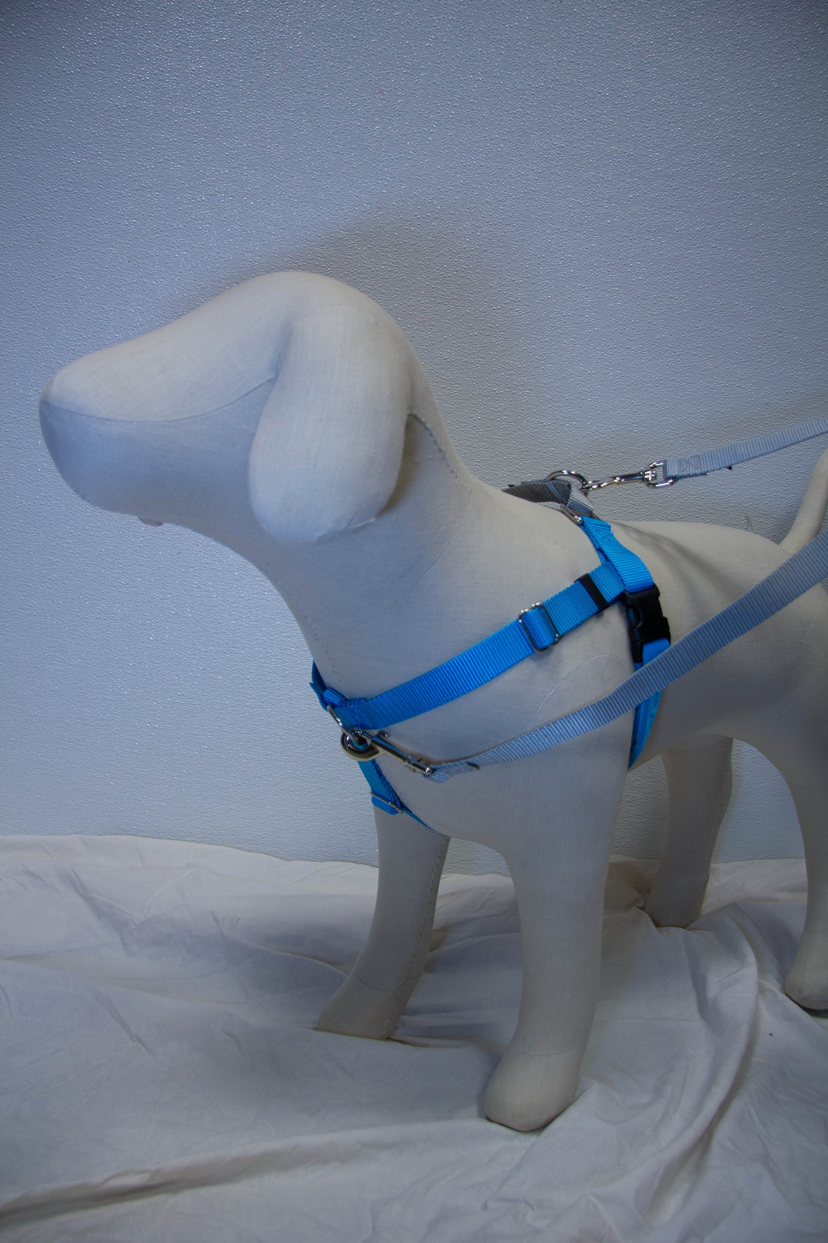 1'' Wide Large (LG) Freedom No-Pull Harness AND Leash Package - Direct from Inventor (Turquoise w/Silver Loop)