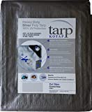 Kotap TRS-1616 Heavy-Duty 10-mil Poly Tarp with 100% UV Protection, 16 x 16-Foot, Silver