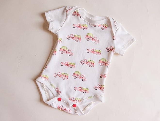 561f6a765 Amazon.com  watermelon truck baby bodysuit