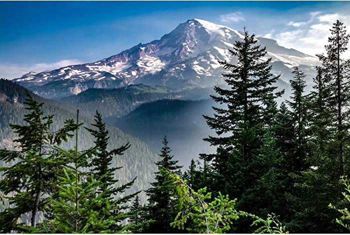 Utah Nature Photography 24x36 Inch Nature Art Print Mount Rainier Rising from Valley Smoke Pine Trees Unframed | Professionally Produced Mountain Wall Poster Direct from The Artist