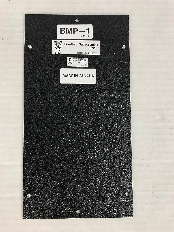 Notificador BMP-1 - en blanco vestido de memoria placa: Amazon.es: Bricolaje y herramientas