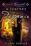 A Journey of Despair (Magic Incarnate Book 4)