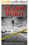 Slow Burn (Detective Alec Ramsay Series Book 2)