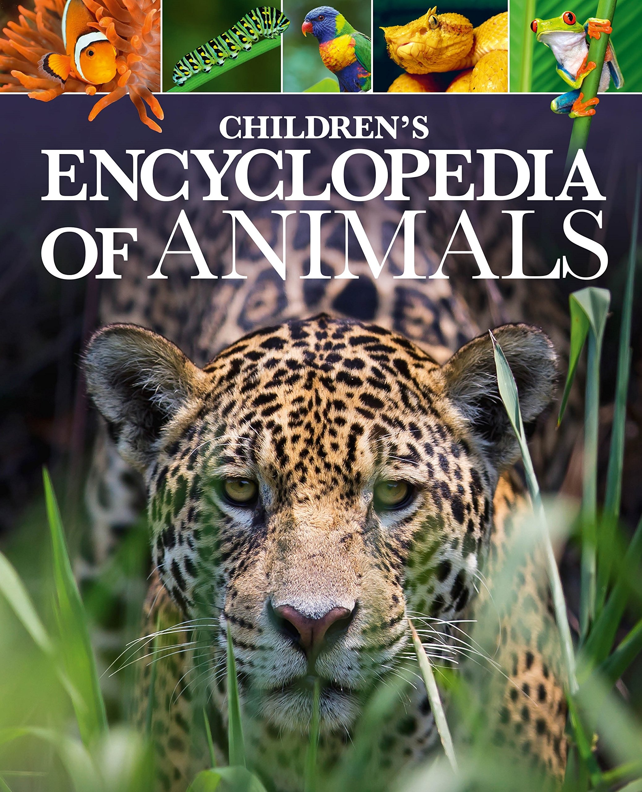 Download Children's Encyclopedia of Animals PDF