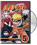 Naruto, Vol. 5 - Shinobi Weapons