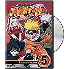 Amazon.com: Naruto Clash of Ninja 2 - Gamecube: Artist Not ...