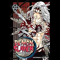 Demon Slayer: Kimetsu no Yaiba, Vol. 22: The Wheel Of Fate