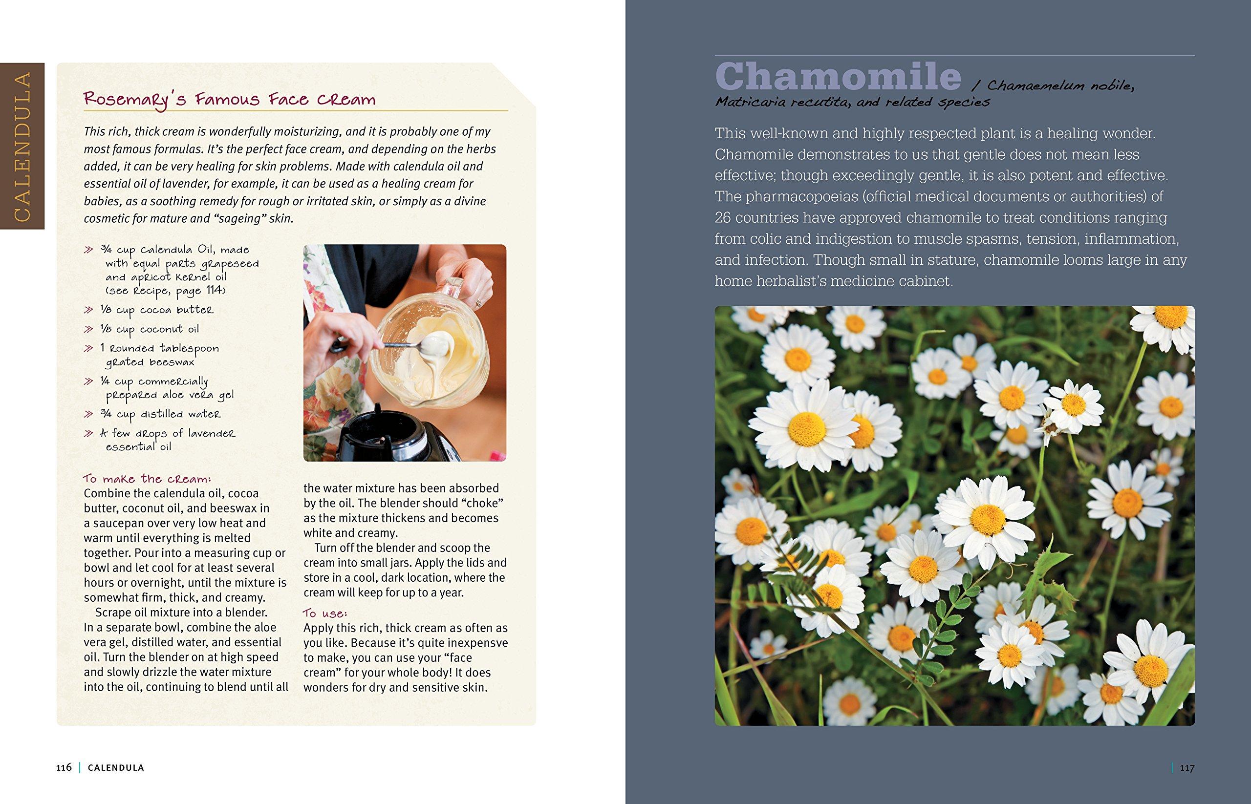 Rosemary gladstars medicinal herbs a beginners guide 33 healing rosemary gladstars medicinal herbs a beginners guide 33 healing herbs to know grow and use rosemary gladstar 9781612120058 amazon books izmirmasajfo