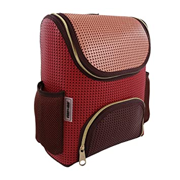 Amazon.com   Light+Nine Student Ergonomic School Backpack (Berries)   Kids   Backpacks 57e00dd613
