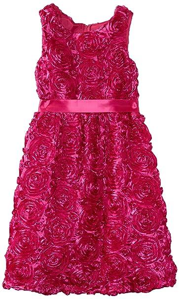 Amazon.com: Rare Editions Big Girls\' Plus Size Soutach Dress ...