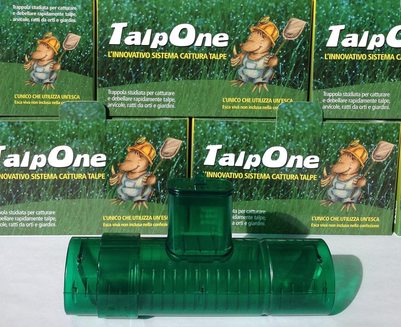 Come uccidere le talpe nel giardino elegant repellente - Come uccidere i topi in casa ...