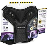 Sherpa Crash Tested Seatbelt Safety Harness, Black, Medium