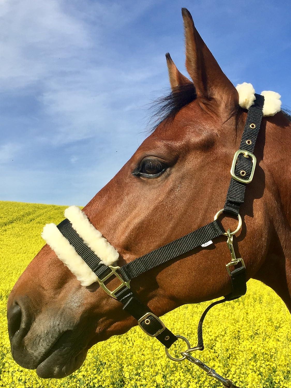 5/colori Happy-Horse-Deals cavezza con pelliccia e ottone beschlaegen doppio regolabile