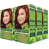 Naturtint Permanent Hair Color - 5C Light Copper Chestnut, 5.28 fl oz (6-pack)