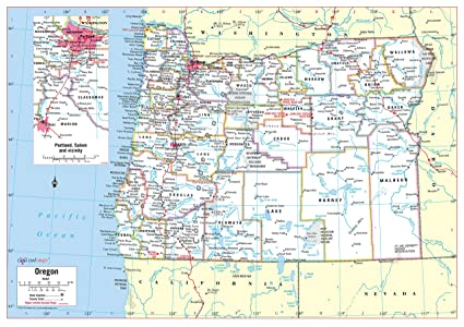 Oregon Political Map By County.Amazon Com Cool Owl Maps Oregon State Wall Map Poster Rolled