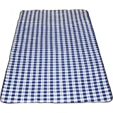 Extra Large Outdoor Blue and White Plaid Picnic Blanket | Fleece & Waterproof | For Soccer Mom, Family, Park, Sports, Beach, Camping or Backyard | Size 96 x 58 Inches | Design By Titan Recreation