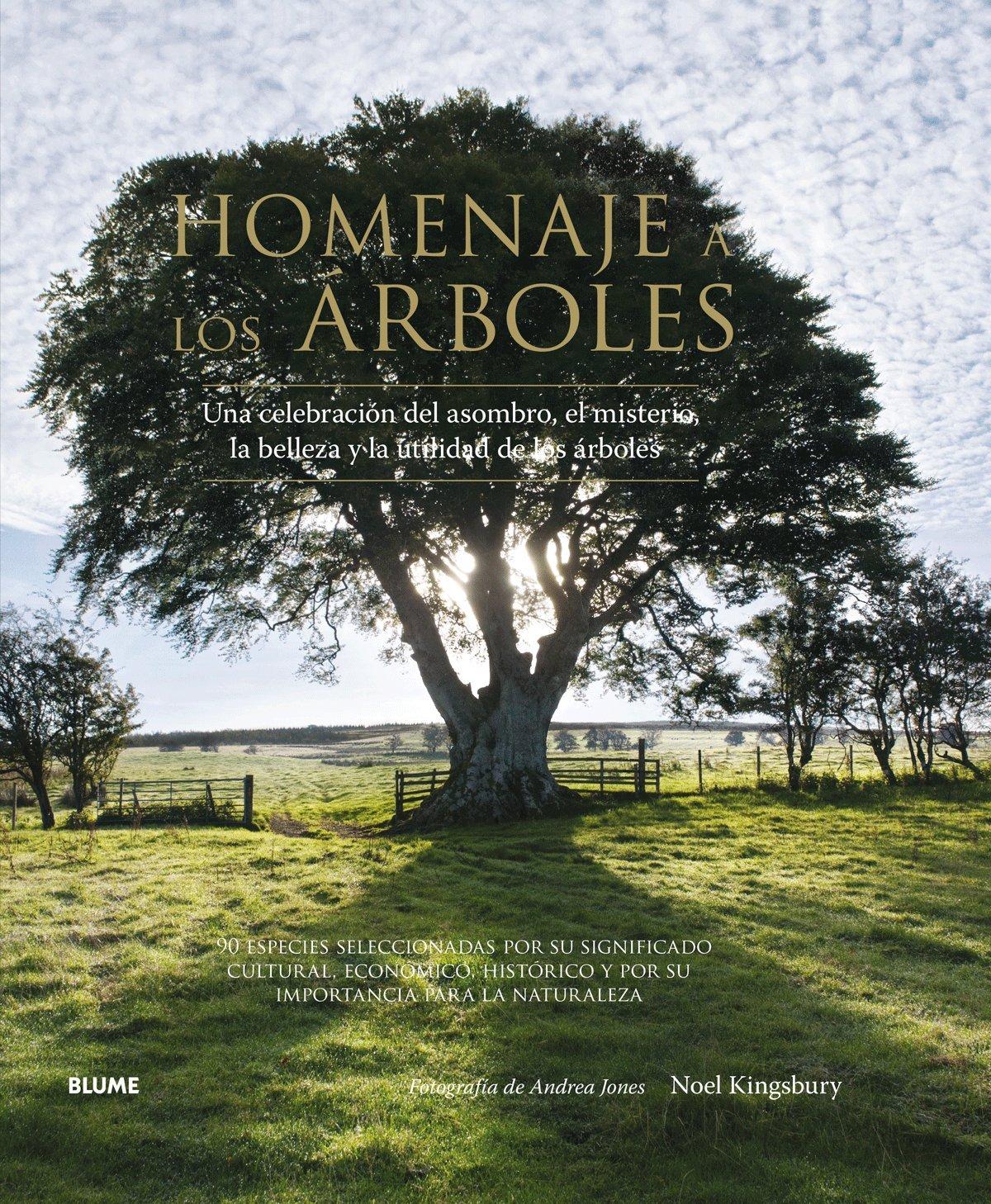 Homenaje a los árboles: Una celebración del asombro, el misterio ...