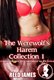 The Werewolf's Harem Collection 1: (A Harem, Succubus, Witch, Supernatural, Hot Wife Erotica)