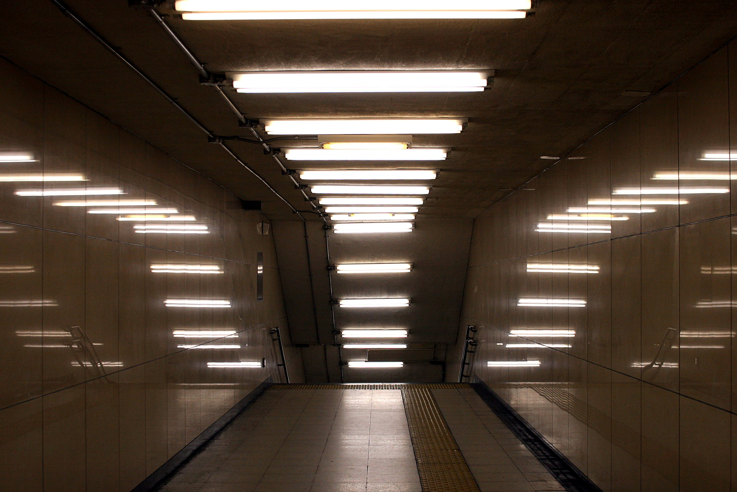 Pack of 8 F32T8/835 32 watt 48'' Straight F32 T8 Medium Bi-Pin (G13) Base, 3,500K Soft White Octron Fluorescent Tube Light Bulb by Sterl Lighting (Image #4)