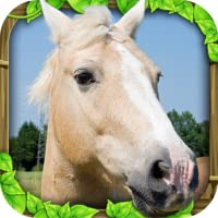 Wild Horse Simulator