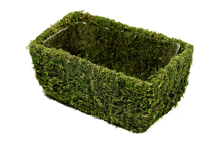 Super Moss (55032) Chino, Fresh Green, Medium Supermoss 7 59834 55032 7