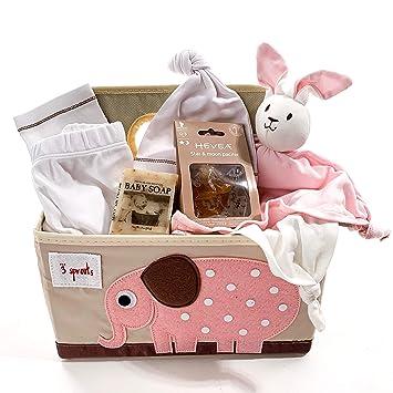 Amazon.com: Cesta de regalo para bebés de menos de 100 ...