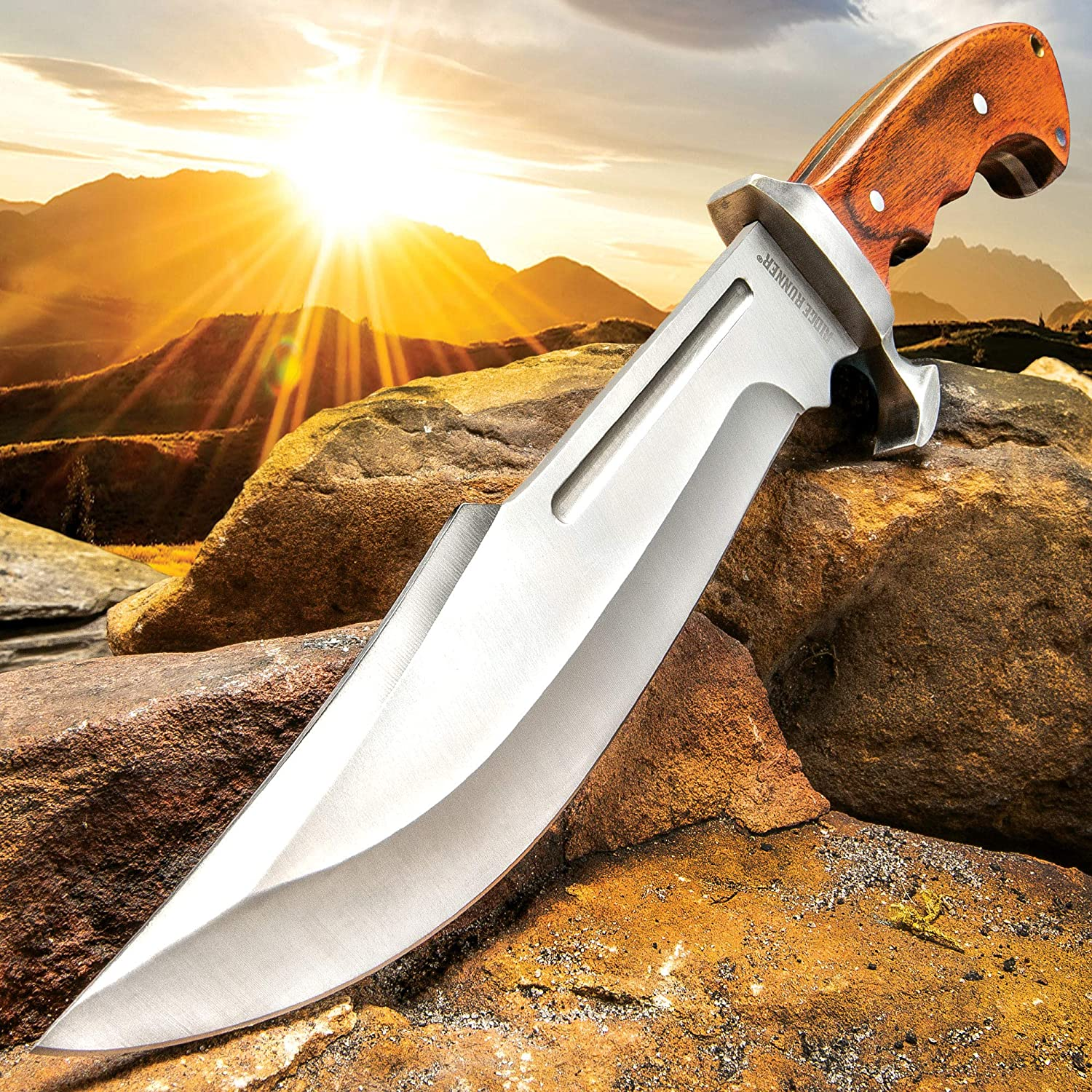 Ridge Runner Woodland Reverie Bowie Fixed Blade Knife – Stainless Steel, Full Tang – Genuine Zebrawood – Nylon Sheath – Collecting, Field Use, Display and More – 13 1 4