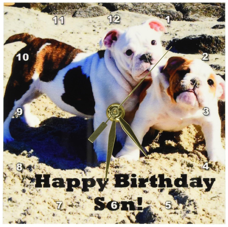 6 by 6-Inch 3dRose dc/_40634/_1 English Bulldog Happy Birthday Son Desk Clock