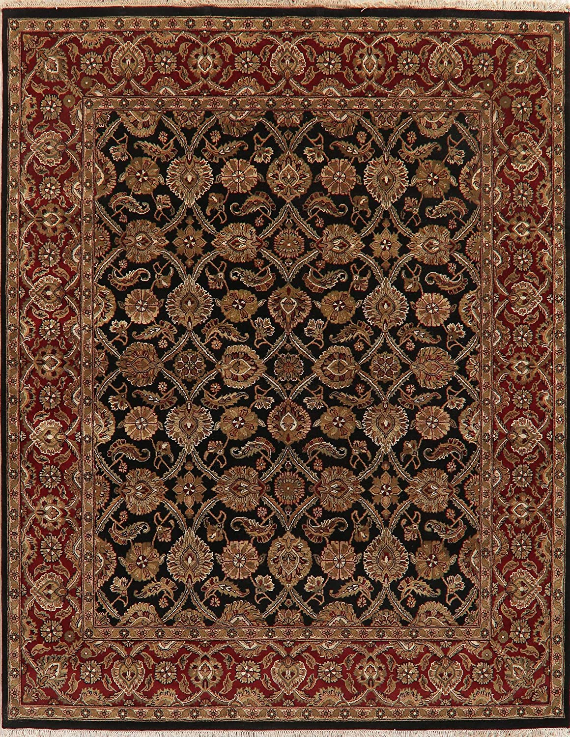 Amazon Com 8x10 Black Burgundy Agra Oriental Area Rug Floral New Zealand Wool Hand Knotted 10 0 X 7 11 Kitchen Dining