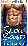 Snow Bound: MMF Bisexual Romance