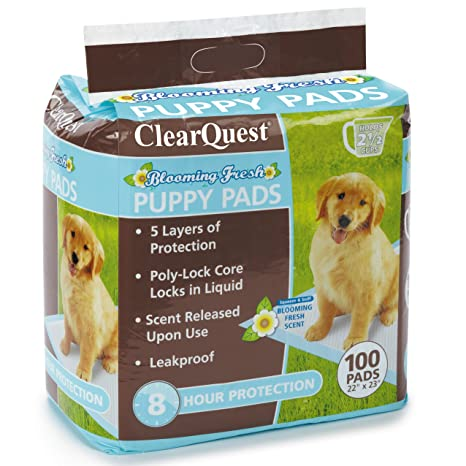 ClearQuest Blooming Dulce Perrito Pads, 100-Count Bolsa, Hold 2,5 Vasos